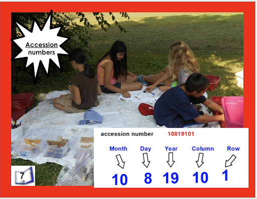 Students sitting outside identifying their excavation materials with accession numbers. Accession numbers are how scientists label what is excavated to be able to locate and identify them. Accesion numbers include month, day, year, column, and row.