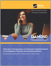Educators' Perspectives on Classroom Implementation of Accessibility Features and Accommodations