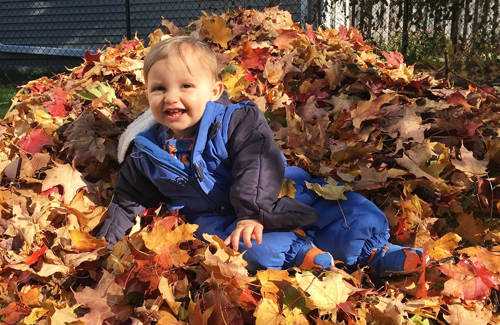 Toddler Luca Sajady, playing in autumn leaves.