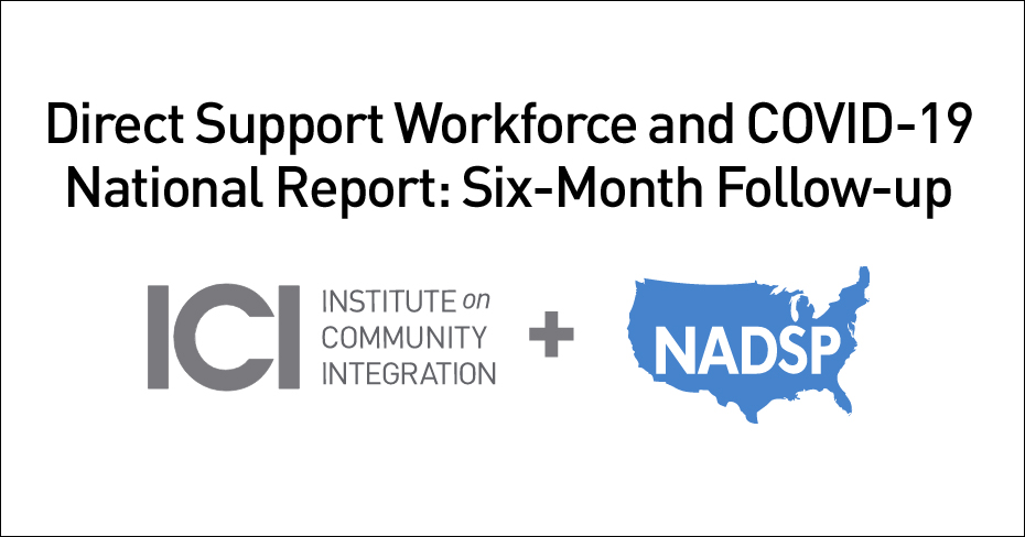 Report title with logos of ICI and NADSP.