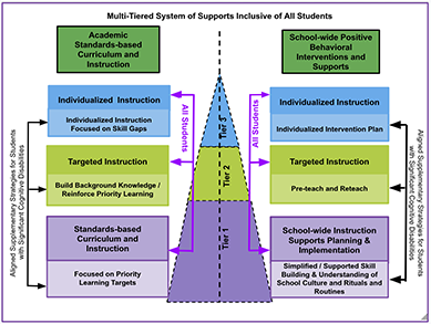 The Multi-Tiered System of Supports (MTSS)